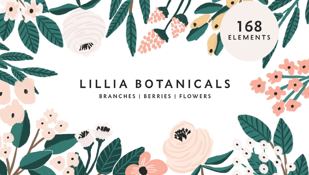 lillia botanicals floral illustrations