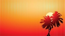 free vector Sunset vector coconut video