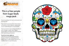 free vector Free Colorful Skull Vector