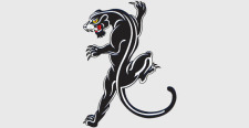 free vector Black panther  free vector