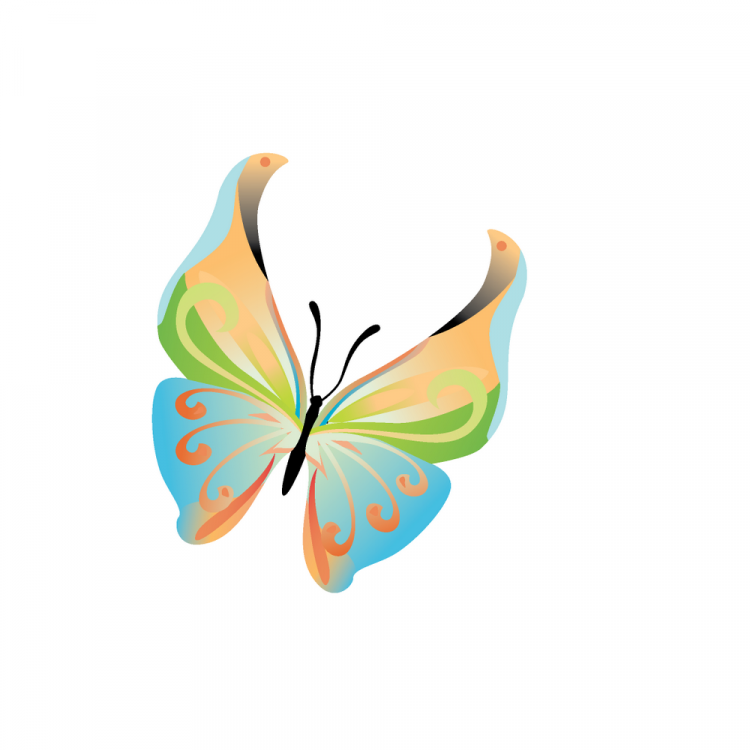 14 colours butterfly vector free vector 4vector