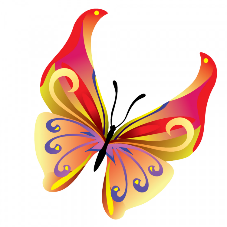 Pink butterfly vector background hd wallpapers pink butterfly vector -  Free Vector 14 Colours Butterfly Vector