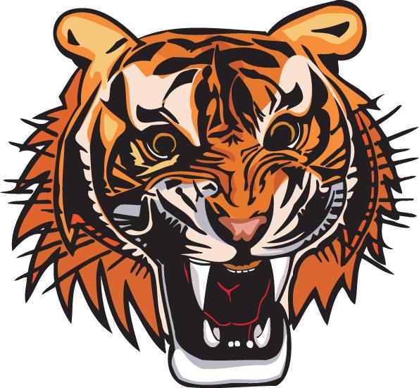 free vector 3 tiger head vector