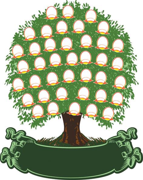 free vector 4 special tree vector