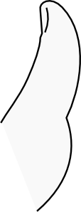 free vector A Thumb clip art