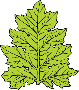free vector Acanthus Leaf clip art