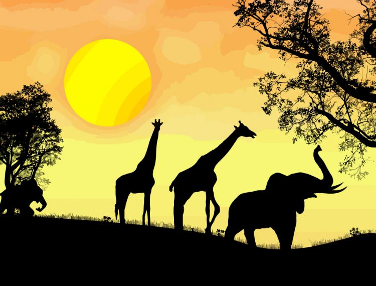 free vector African safari vector