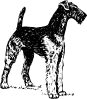 free vector Airedale clip art