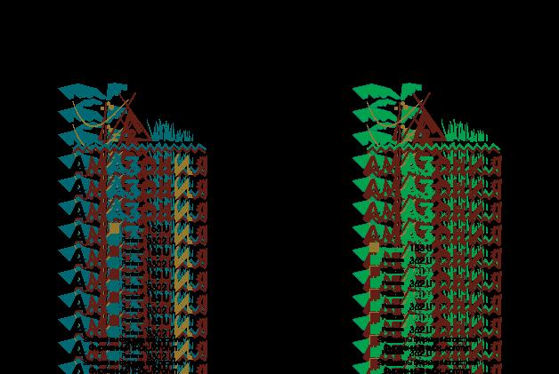 free vector Amazonia logo