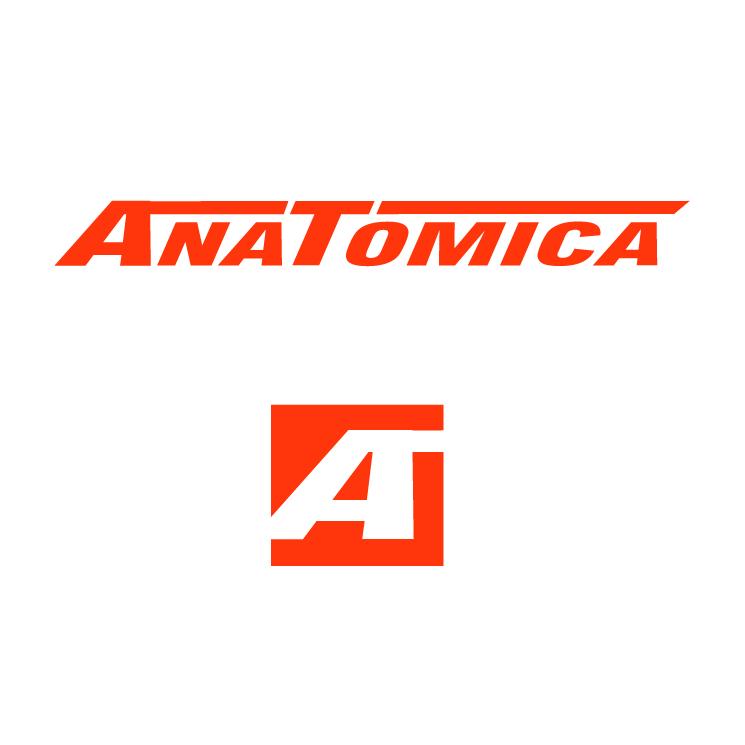 free vector Anatomica