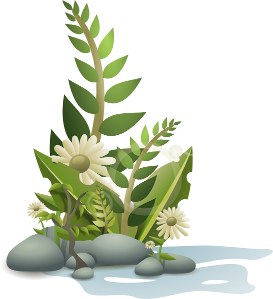 free vector Andy Plants Pebbles And Flowers clip art