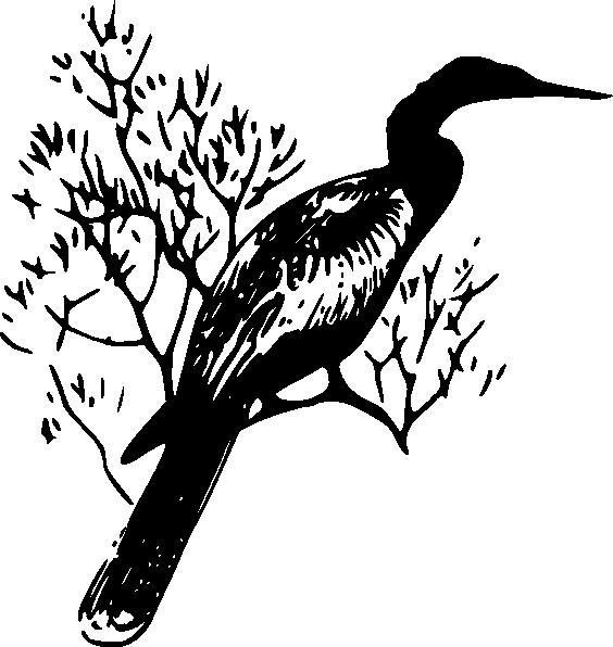 free vector Anhinga clip art