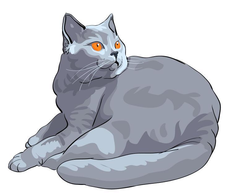 free vector Animal cat 03 vector