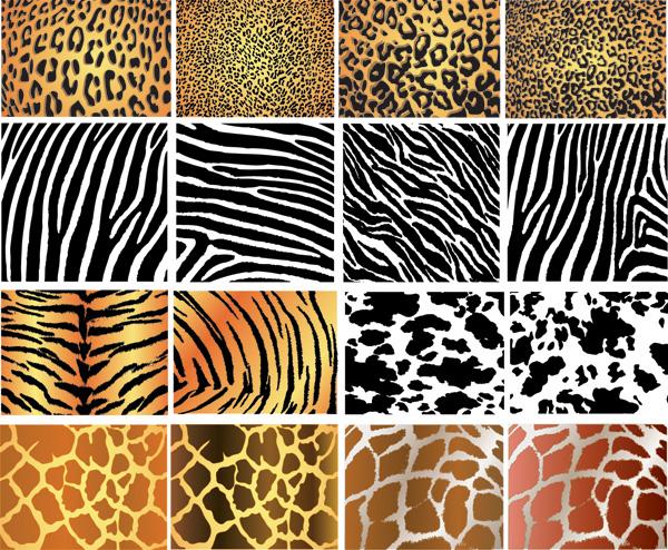 animal skin patterns - photo #6