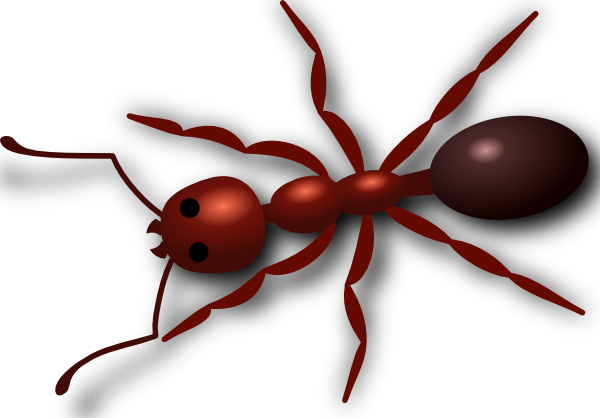 free-vector-ant-clip-art_107008_Ant_clip_art_hight.png