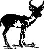 free vector Antelope clip art 127999
