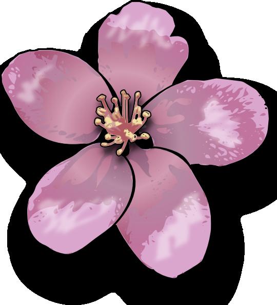 free vector Apple Blossom clip art