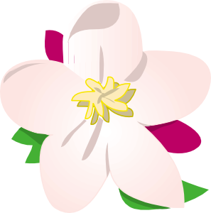 free vector Apple Blossom clip art