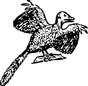 free vector Archaeopteryx clip art
