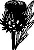 free vector Artichoke clip art 114677