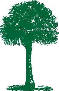 free vector Australian Fan Palm clip art