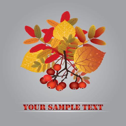free vector Autumn fruit autumn leaves 01 vector
