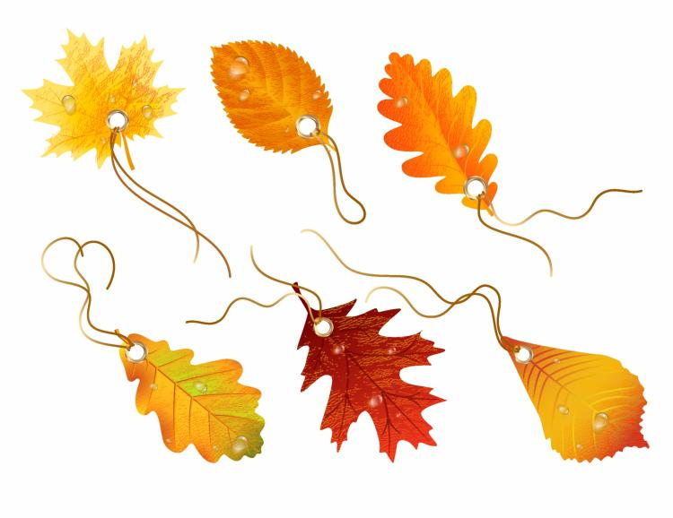 free vector Autumnal discount. vector fall leaves