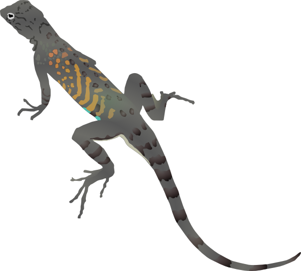 free vector Az-lizard clip art