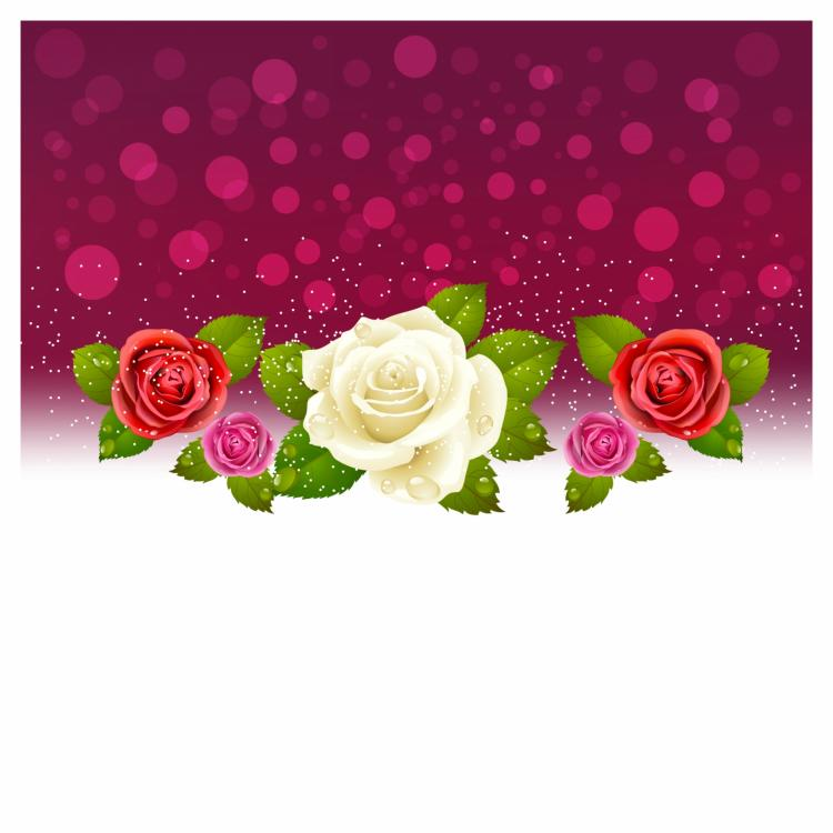 free vector Background of red and white roses