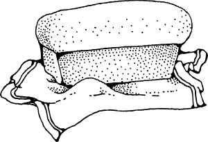 free vector Bakery Toast Loaf clip art