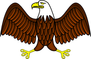 free vector Bald Eagle clip art
