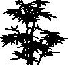 free vector Bamboo clip art
