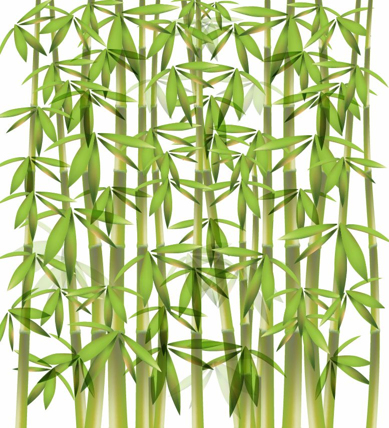 free vector Bamboo Vector Illustration