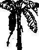 free vector Banana Tree clip art