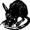 free vector Bandicoot clip art