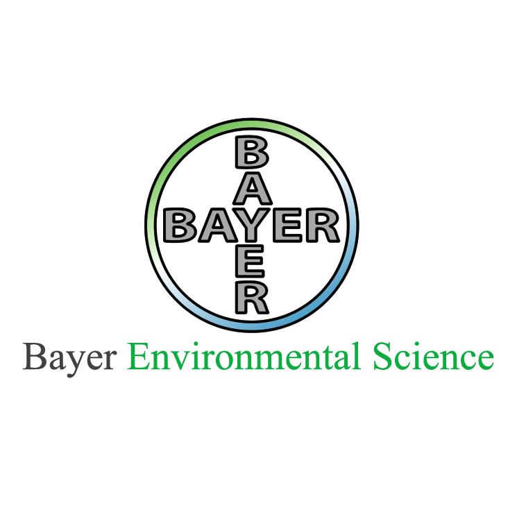 free vector Bayer 4