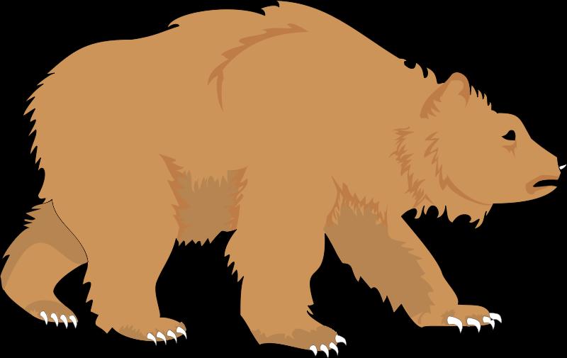 free vector Bear 1