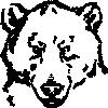 free vector Bear Head clip art