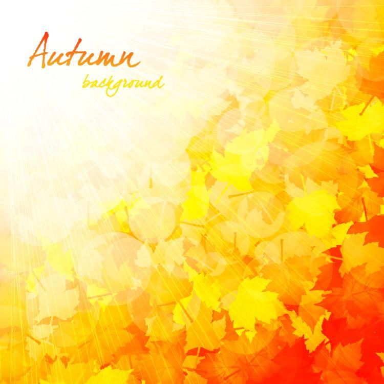 free vector Beautiful autumn background 03 vector