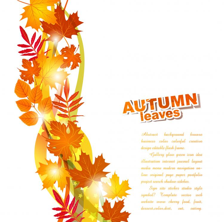 free vector Beautiful autumn leaf background 02 vector