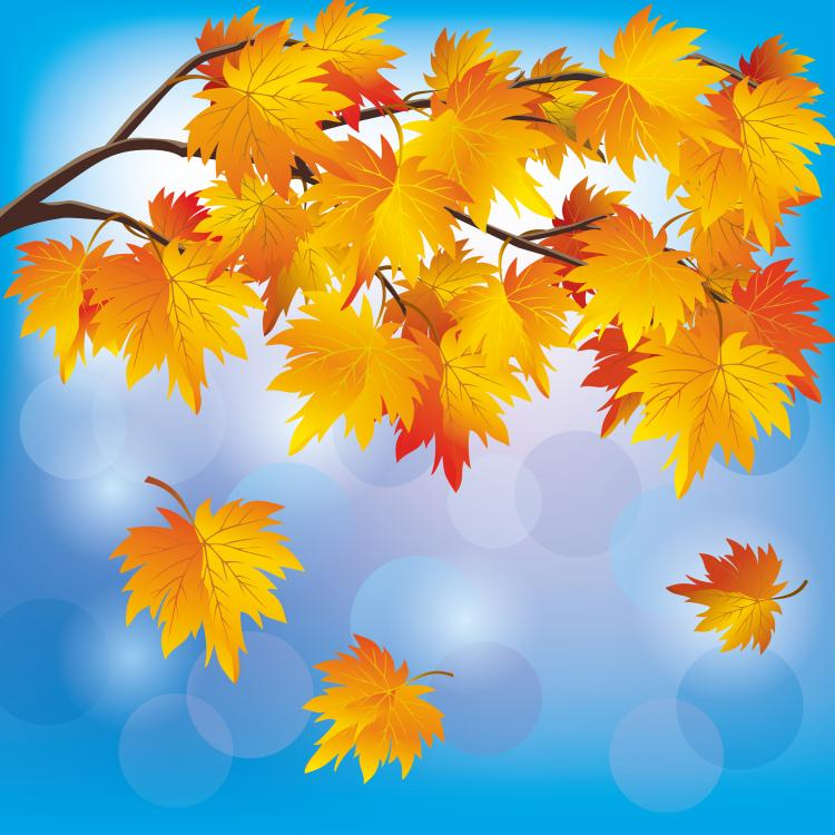 beautiful autumn leaf background 05 vector free vector 4vector