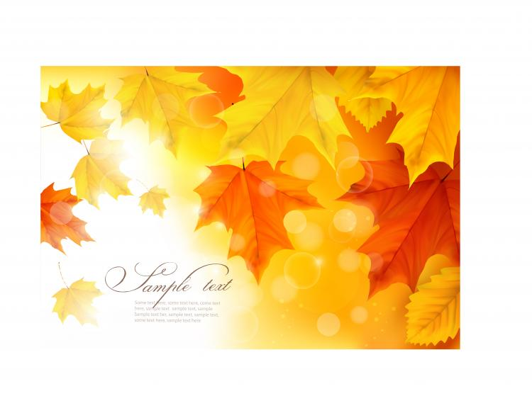 free vector Beautiful autumn leaves card 01 vector