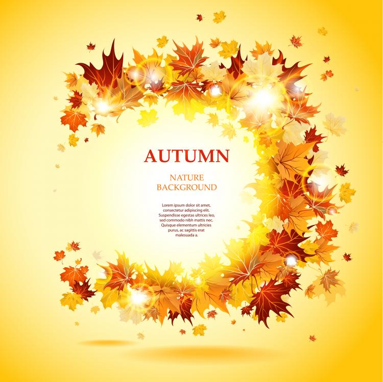 Autumn Leaves Vector Beautiful autumn leaves card