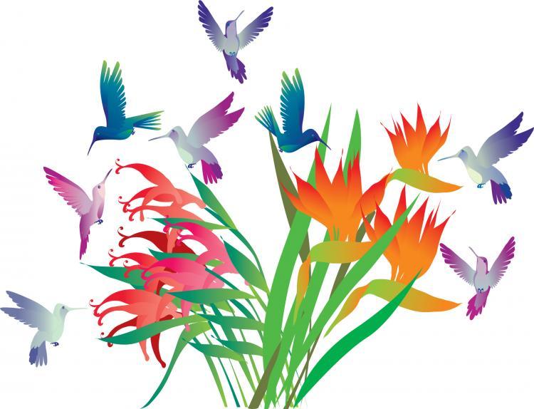 Beautiful decorative flowers vector Free Vector / 4Vector