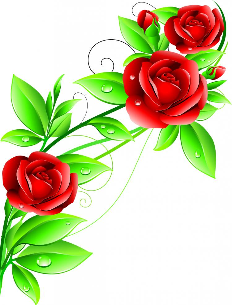 beautiful flowers  vector free vector / vector, Beautiful flower