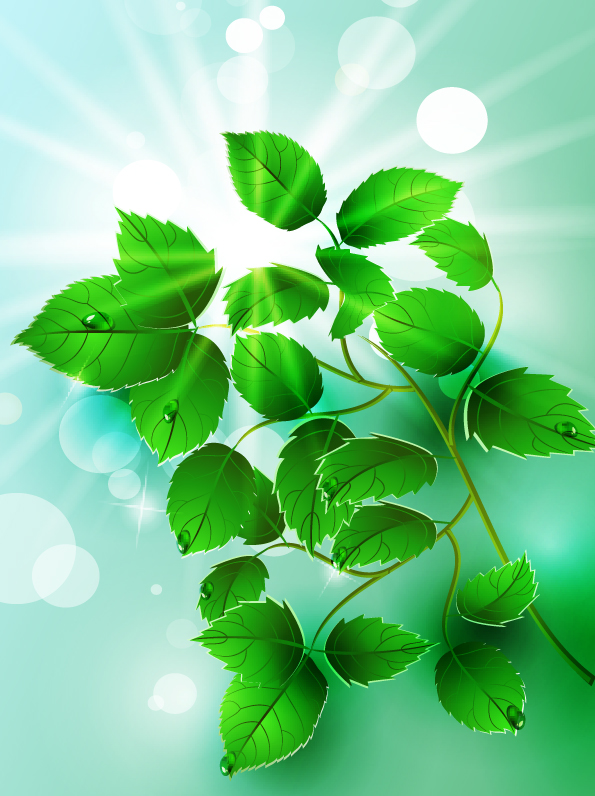 free vector Beautiful light green leaves vector