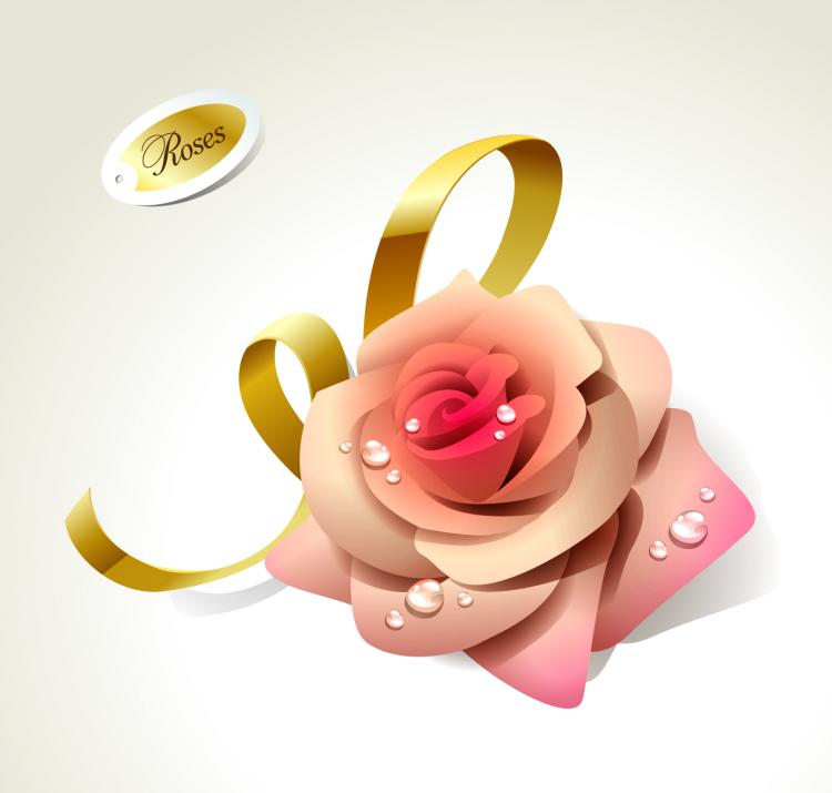Beautiful Rose Pics Free Download Beautiful Roses 01 Vector Free