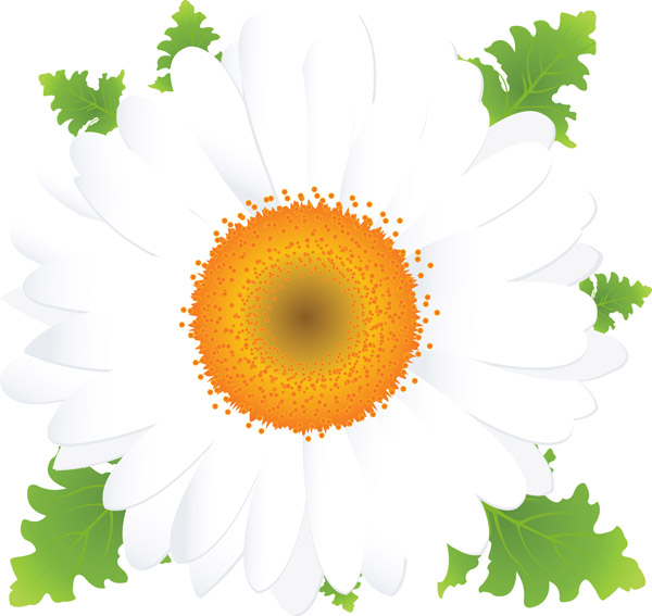 free vector Beautiful small flowers vector 2