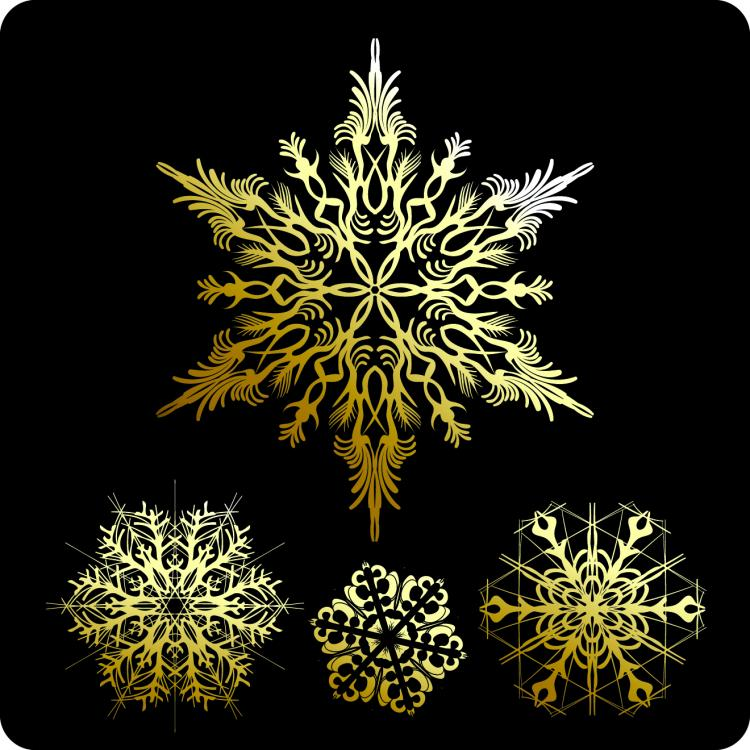 free vector Beautiful snowflake pattern 01 vector