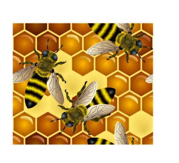 free vector Bee honey honeycomb vector